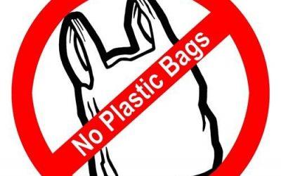 Bags Ban